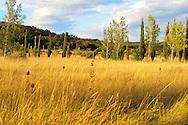 Paysages des Hautes Corbieres, Aude, France.