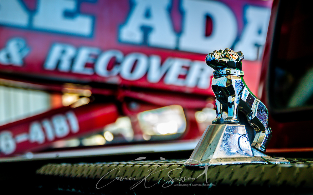 A Mack Trucks bulldog hood ornament adorns a tool chest at Mike Adams Towing and Air Cushion Recovery, March 22, 2016, in Macon, Georgia. Adams started his business with a 1993 with a 1989 Mack Super-Liner. Today, he owns 27 towing and recovery trucks, nearly a third of which are Macks. His newest acquisition is a 2016 Mack Granite with a 50-ton Century rotator. (Photo by Carmen K. Sisson/Cloudybright)