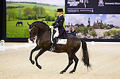 Dressage International