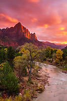 The Watchman at sunset in Zion National Park is an iconic Utah scenic photography location.  The view presented is one to be seen in person.