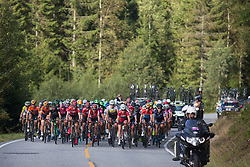 The peloton ascends an unmarked climb on Stage 2 of the Ladies Tour of Norway - a 140.4 km road race, between Sarpsborg and Fredrikstad on August 19, 2017, in Ostfold, Norway. (Photo by Balint Hamvas/Velofocus.com)