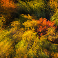 "Foliage of the Mohican Valley as viewed from Mohican State Park Gorges Overlook during golden hour, with in-camera multiple exposure rotate and zoom (MERZ) technique to accentuate the ""fiesta"" of color and light. Image earned a place in North American Nature Photography Association (NANPA) 2015 Showcase and was published in NANPA Expressions  journal. Published in Landscape Photography magazine, Wall of Fame feature, Issue 79/Sept. 2017."