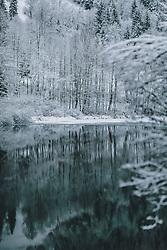 THEMENBILD - die winterliche Landschaft und die angeschneiten Bäume spiegeln sich im See, aufgenommen am 29. Jänner 2020 in Kaprun, Oesterreich // the winter landscape and the snow-covered trees are reflected in the lake, in Kaprun, Austria on 2020/01/29. EXPA Pictures © 2020, PhotoCredit: EXPA/Stefanie Oberhauser