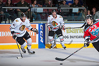 KELOWNA, CANADA - OCTOBER 4:  Nic Petan #19 and Steven Alldridge #41 of the Portland Winterhawks skate on the ice at the Kelowna Rockets on October 4, 2013 at Prospera Place in Kelowna, British Columbia, Canada (Photo by Marissa Baecker/Shoot the Breeze) *** Local Caption ***