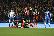 Bournemouth smiles as the team celebrates striker Yann Kermorgant's goal during the Sky Bet Championship match between Brighton and Hove Albion and Bournemouth at the American Express Community Stadium, Brighton and Hove, England on 10 April 2015. Photo by Geoff Penn.