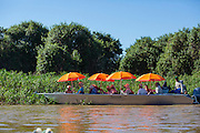 Tourists, in boats, watching jaguar, eco-tourists, Pantanal, Brazil, South America