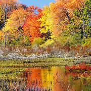 Great Meadows National Wildlife Refuge, Sudbury, Massachusetts