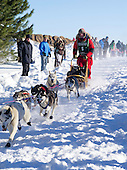 Apostle Islands Sled Dog Race 2014