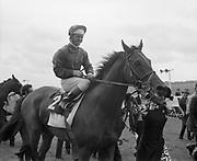 Irish Derby 1973 Irish Derby 1973 The Curragh Raccourse  --(Horse) Weavers' Hall –  Jockey is George McGrath