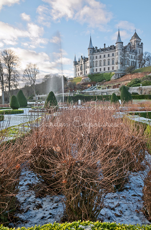 The East Parterre with Potentilla fruticosa 'Abbotswood' (shrubby cinquefoil 'Abbotswood), fountain, Taxus baccata 'Fastigiata' (Irish yew and castle in background<br /> <br /> <br /> <br /> photography &copy; Andrea Jones
