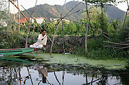 A Kashmiri man perched at the edge of his boat fishes during the strike with a simple pole, made from a branch similar to those that surround him.
