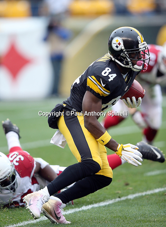 Pittsburgh Steelers wide receiver Antonio Brown (84) breaks away from a tackle attempt by Arizona Cardinals running back Stepfan Taylor (30) as he returns a first quarter punt during the 2015 NFL week 6 regular season football game against the Arizona Cardinals on Sunday, Oct. 18, 2015 in Pittsburgh. The Steelers won the game 25-13. (©Paul Anthony Spinelli)