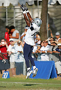 OXNARD, CA - AUGUST 17:  Wide receiver Terrell Owens #81 of the Dallas Cowboys goes airborne to catch a pass during Dallas Cowboys training camp on August 17, 2006 in Oxnard, California. ©Paul Anthony Spinelli *** Local Caption *** Terrell Owens