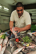 fish on display at a fishmonger Photographed in Acre, Israel