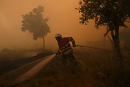LEIRIA, PORTUGAL - JUNE 19:  A firefighter battles a fire after a wildfire took dozens of lives on June 19, 2017 in small village near Pedrogao Grande, in Leiria district, Portugal. On Saturday night, a forest fire became uncontrollable in the Leiria district, killing at least 62 people and leaving many injured. Some of the victims died inside their cars as they tried to flee the area.  (Photo by Pablo Blazquez Dominguez/Getty Images)