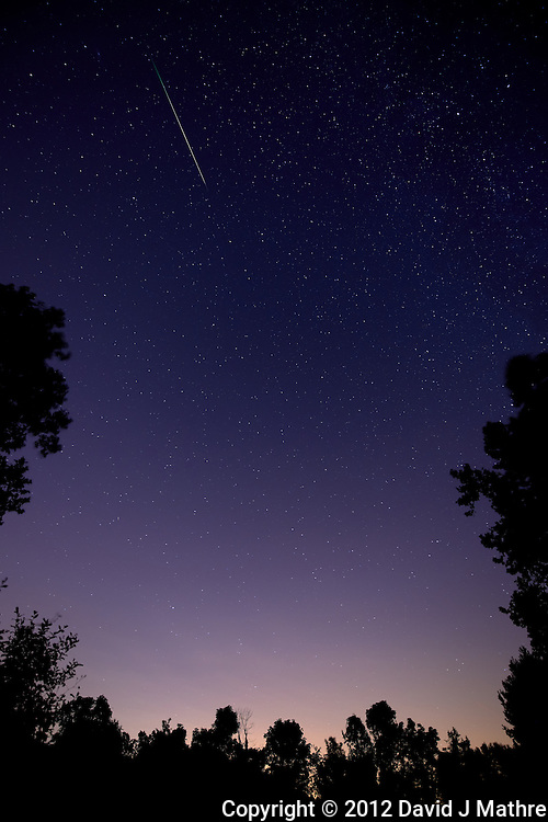 Perseid Meteor Trail. Summer Night Sky in New Jersey. Image taken with a Nikon D800 and 14-24 mm f/2.8 lens (ISO 400, 14 mm, f/2.8, 30 sec).
