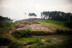 Deforested area in Yen Bai Province, Vietnam, Southeast Asia