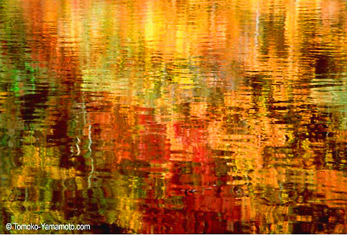 impressionist reflection photo by Tomoko Yamamoto of autumn palette. Fall color reflection in the water are red, orange, maroon and green. Original on 35mm slide film.  Shot with a tripod and enlarges very well.