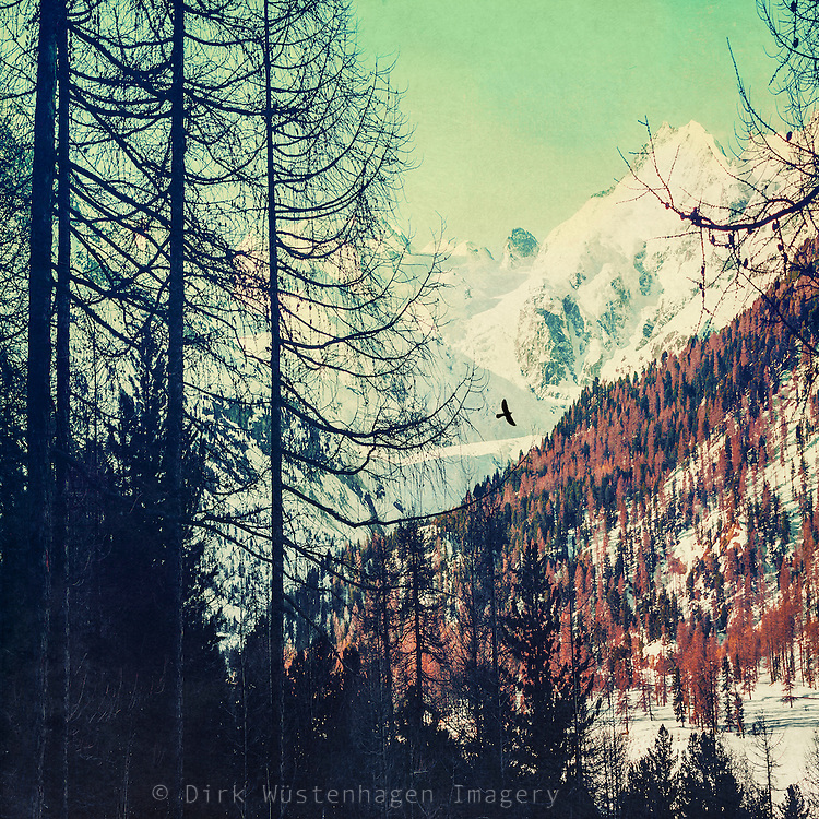 View at the snow capped mountains from a rest area on Julierstrasse  on our way through the Swiss Alps. Textured photograph<br /> Society6 products: https://society6.com/product/all-gone-cd1_tapestry#55=414