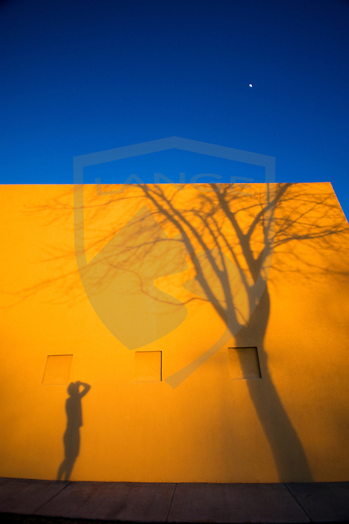 shadow tree with building and moonrise as man looks on.  albuquerque, new mexico, usa.