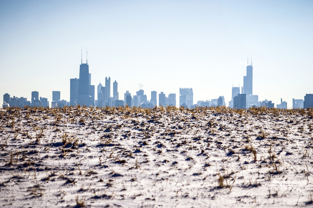 Chicago skyline peeking out of the bird sanctuary in Montrose Point just after a light dusting of snow