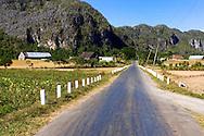 Farms in the San Carlos area, Pinar de Rio, Cuba.