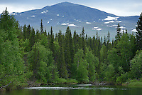 Kvikkjokk river delta, in the Laponia UNESCO World Heritage Site, Greater Laponia rewilding area, Lapland, Norrbotten, Sweden