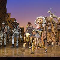 Mexico, D.F. 19/11/2015. Teatro Telcel. Funcion especial del musical El Rey Leon en la cual se develo una placa conmemorativa porque 250 mil espectadores han visto la puesta en escena en Mexico.