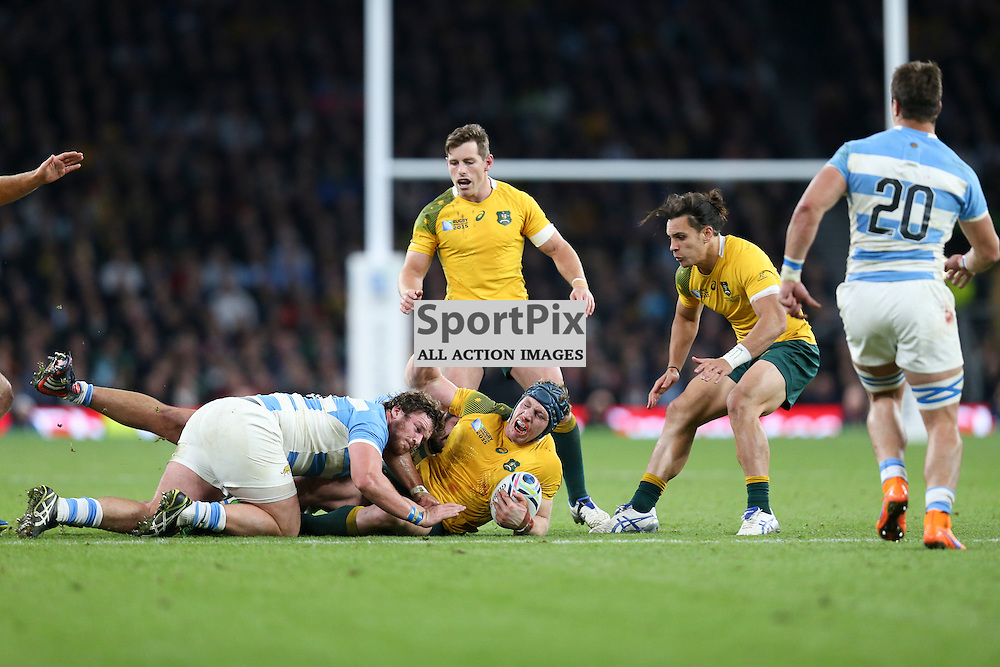 TWICKENHAM, ENGLAND - OCTOBER 25: David Pocock of Australia brought down by  during the 2015 Rugby World Cup semi-final two match between Argentina and Australia at Twickenham Stadium, London on October 25, 2015 in London, England. (Credit: SAM TODD | SportPix.org.uk)