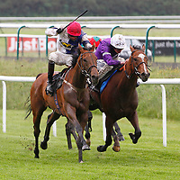 Tingo In The Tale and James Doyle winning the 3.15 race