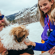 Spectators watch as participants jump into freezing water for charity. Kids play with puppy during event.