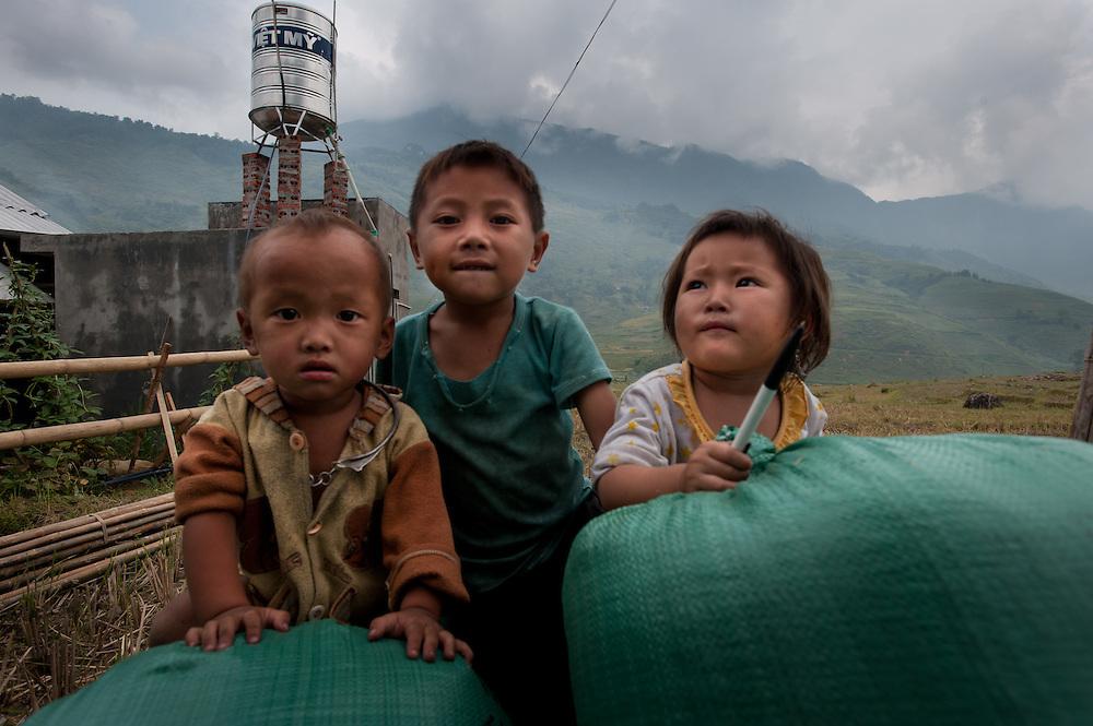 Children in Sa Pa, Vietnam pose on their farm.