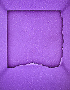 abstraction in purple