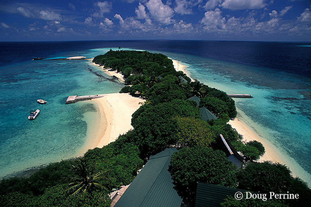 Helengeli Island, North Male Atoll, Maldives ( Indian Ocean )
