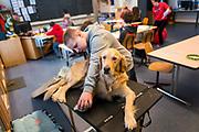 Saint-Cergue, décembre 2017. reportage dans une école spécialisée à St-Cergue, dans laquelle un chienne scolaire est utilisé depuis le début de l'année pour venir en aide et calmer les élèves. C'est le premier chien à être utilisé de la sorte en Suisse romande. Tahiti se fait toiletter. © Olivier Vogelsang