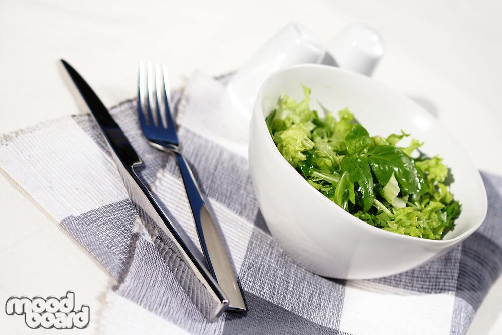 Studio shot of lettuce in white bowl