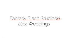 2014 wedding logo