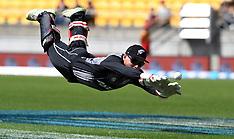 Wellington-Cricket, International, New Zealand v Pakistan T20