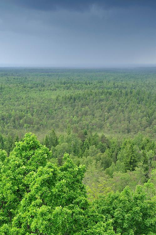 Slitere National Park, Latvia