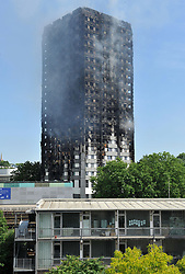 The view from the flat of Maureen Franklin, 76, who witnessed the fire engulfing the 24-storey Grenfell Tower in west London. ... Tower block fire in London ... 14-06-2017 ... London ... UK ... Photo credit should read: Nick Ansell/PA Wire. Unique Reference No. 31694909 ... Picture date: Wednesday June 14, 2017. At least six people have died after the huge fire destroyed a tower block in west London, with the death toll expected to rise. See PA story FIRE Grenfell. Photo credit should read: Nick Ansell/PA Wire