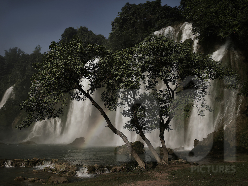 A tree grows along the river bank. A tiny rainbow appears on the picture. Ban Gioc waterfall, Cao Bang province, Vietnam, Asia.
