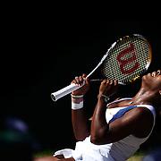 Tennis Wimbledon 2009