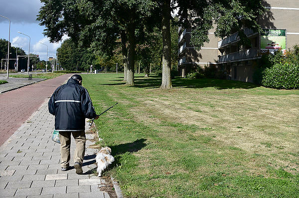 Nederland, Nijmegen, 16-9-2013Een oudere, bejaarde, man pakt met een prikstok klein afval en papier op van de stoep waar hij op loopt terwijl hij zijn hond uitlaat. Op deze manier helpt hij zijn directe woonomgeving, leefomgeving, schoon te houden. Hij doet dit steeds als hij een wandeling in de wijk maakt.Foto: Flip Franssen/Hollandse Hoogte