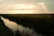 Storm at sunset over the Florida Everglades