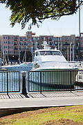 Boats and Yachts Docked at Marina Del Rey