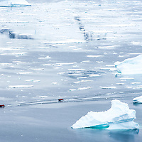 Two zodiacs filled iwth guests naviagate through the immense icy waters surrounding Danco Island in Antarctica.