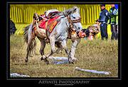 Tibet, Horserace on 5100 metes
