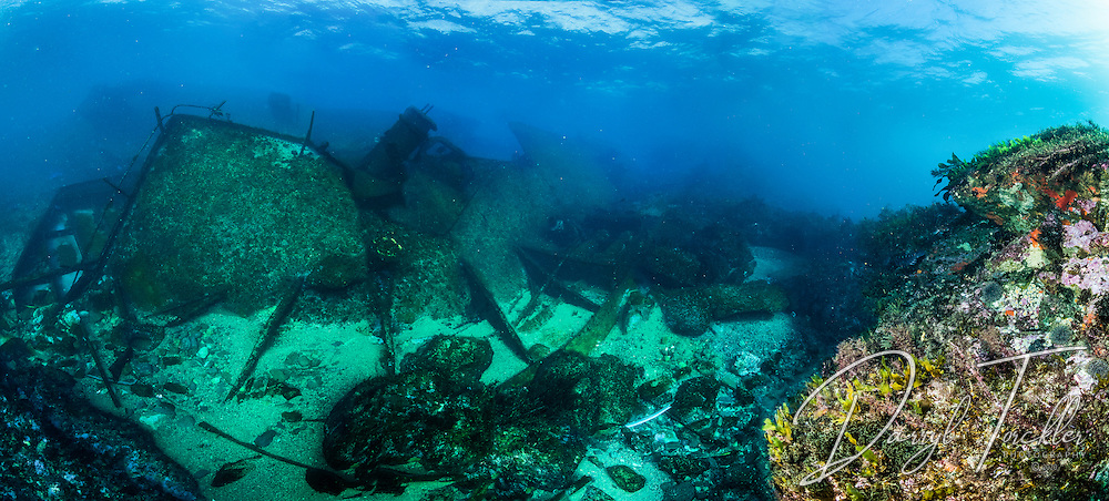 Underwater panorama on the Astrolabe reef on the Rena shipwreck, with Rena wreck in background. Underwater panorama made up of eight images stitched into a panorama. Approx. 180 degrees field of view. New Zealand