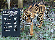 ZSL London Zoo - Annual Stocktake