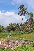 Litter at Colva Beach, Goa